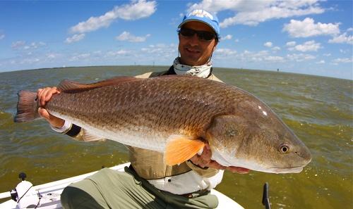 Mosquito lagoon fishing report for Red fish season