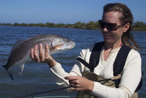 orlando redfish, orlando redfish trips, wading for redfish