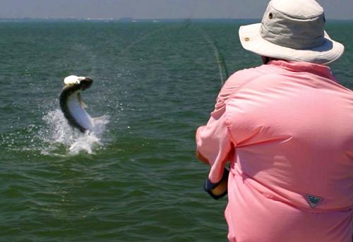 Orlando fishing, orlando tarpon fishing