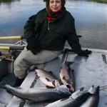 silver salmon catch, goodnews river alaska