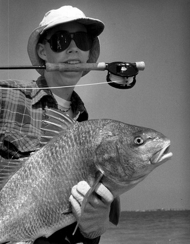 black drum image