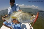 Another Mosquito Lagoon Fishing Report