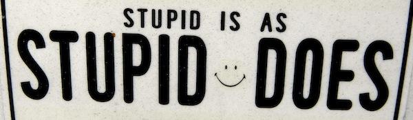 stupid is