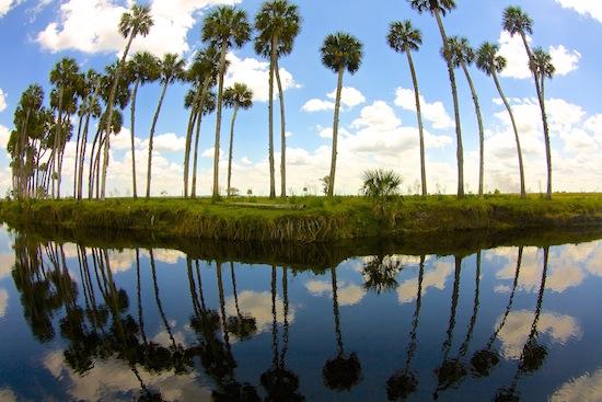 mosquito lagoon fishing report 511