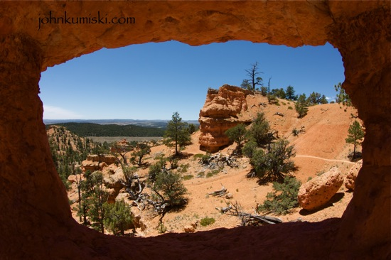 canyon by don gayton essay