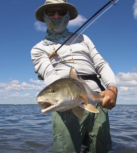 Mosquito lagoon fishing report indian river lagoon for Banana river fishing