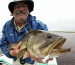 Orlando Area Freshwater Fishing Report