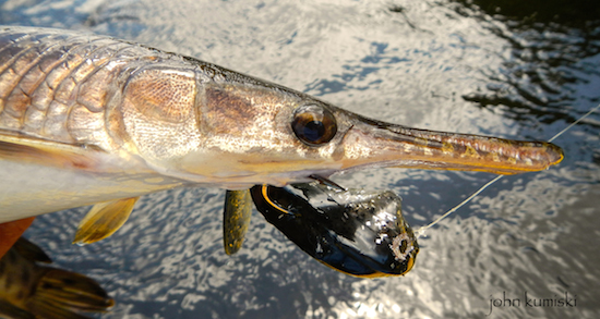 Ode to the econ the bang o craft rides again the for Gar fishing lures