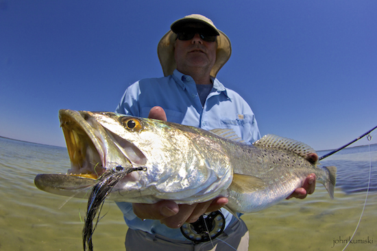 sexyfly trout