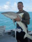 Shark Fishing for Dummies