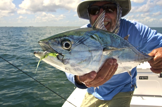 Atlantic spanish mackerel archives the spotted tail for Ponce inlet fishing
