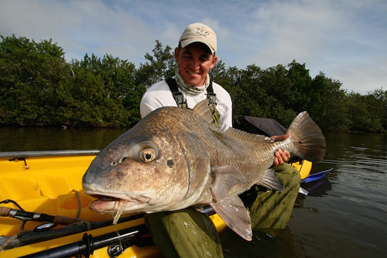 Saltwater orlando fishing reportl the spotted tail for Saltwater drum fish