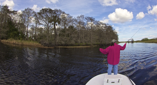 Fished around orlando area fishing report the spotted tail for Wilson river fishing report