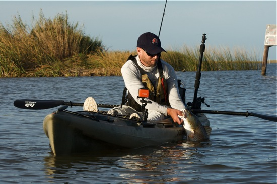 Venice la fishing report and photo essay the spotted tail for Cocodrie fishing report