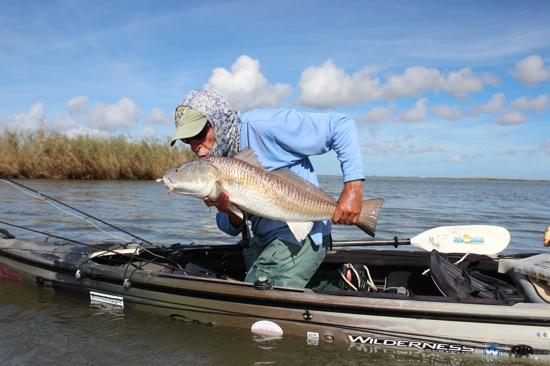 venice la fishing report april 2015 - photo#15