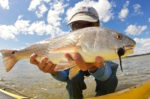 Memorial Day Orlando Fishing Report