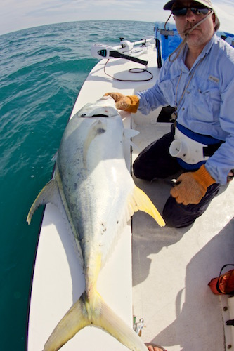 Radloff jack 2 the spotted tail for Port canaveral fishing report