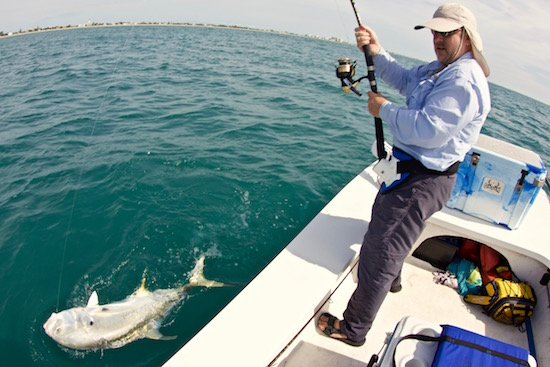 Radloff jack battle the spotted tail for Port canaveral fishing report