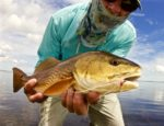 Kayak Fly Fishing Mosquito Lagoon Redfish- A New Reality