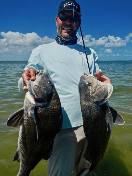 black drum fishing report