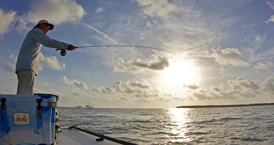 chokoloskee fishing report