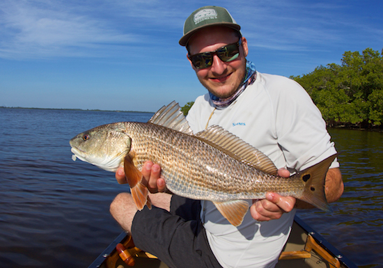 sw florida fishing report