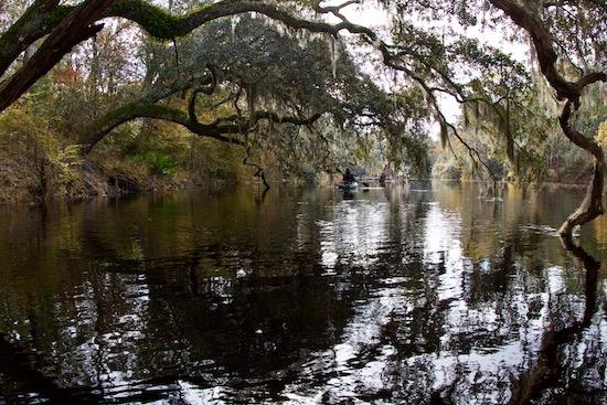 paddle fishing fishing report