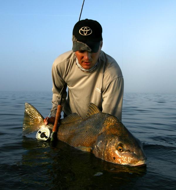 Orlando black drum fishing charters for Black drum fishing