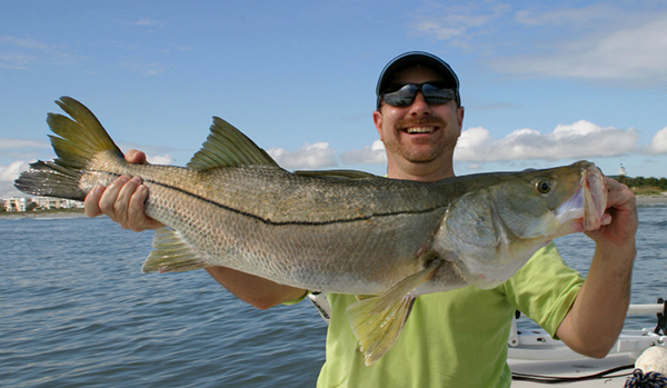 Snook fishing charters for Snook fishing lures