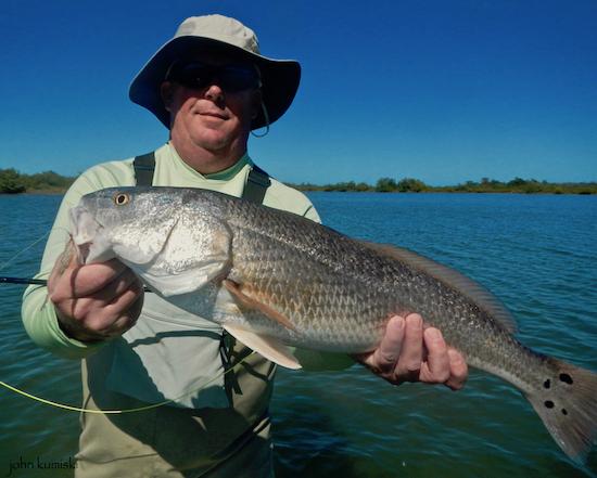Brian nicered capt john kumiski 39 s spotted tail website for John s pass fishing charters