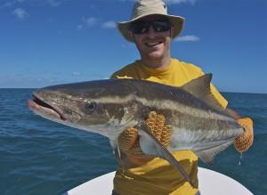 secrets of sightfishing