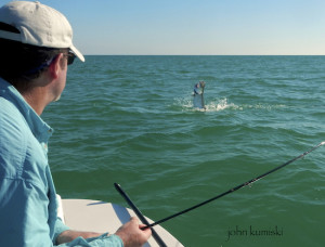 tarpon fishing pine island sound